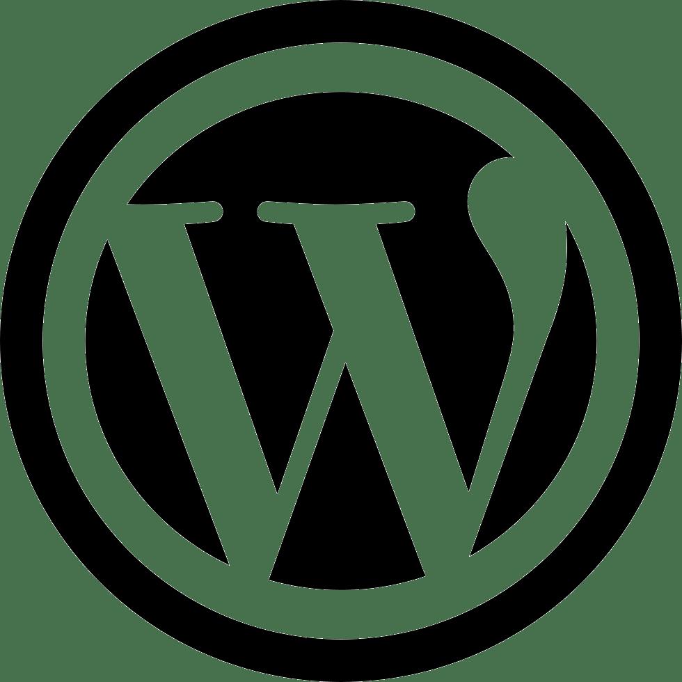 úprava webu ve wordpress